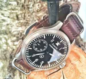 Bomber on birch :)